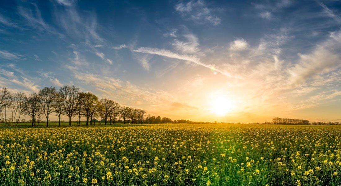 abastecerse de energía solar