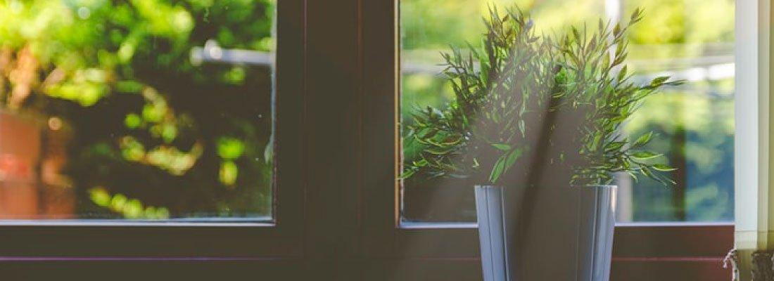 La huella de carbono y cómo puedes empezar a reducirla desde tu hogar