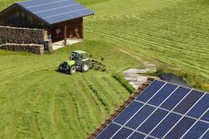 paneles solares en instalaciones agrícolas